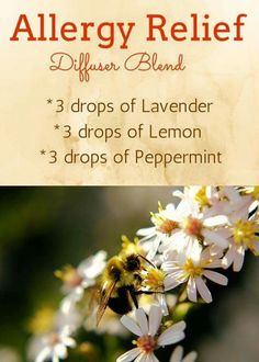Allergy diffuser oils