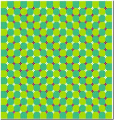 Take a look at this amazing Blue and Green Trippy Moving Optical Illusion illusion. Browse and enjoy our huge collection of optical illusions and mind-bending images and videos. Amazing Optical Illusions, Eye Illusions, Art Optical, Op Art, Eye Tricks, Mind Tricks, Magic Tricks, Illusion Pictures, Eyes Game