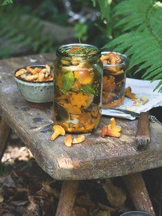 Krásné mladé houbičky se dají dát do čehokoli, ale když jich máte opravdu hodně, zkuste je naložit na způsob okurek. Podmínkou je, že musí být dokonale zdravé, dokonale pevné a také dokonale očištěné!