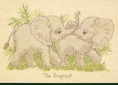 Animals- baby Elephants (bbj2080) 1/3