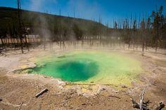 Biomes - Lakes - Geothermal [JA]