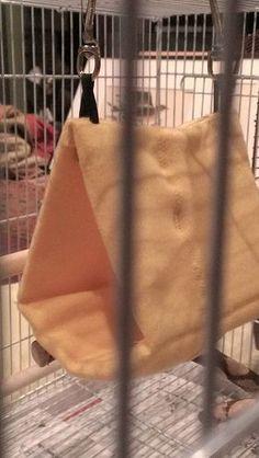 "DIY: ""Happy Hut"" sleeping tent (pic heavy!) - Parrot Forum - Parrot Owner's Community"