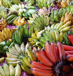 bananas Banana Fruit, Banana Plants, Fruit Plants, Fruit Garden, Edible Garden, Fruit Trees, Rainbow Fruit, Colorful Fruit, Tropical Fruits