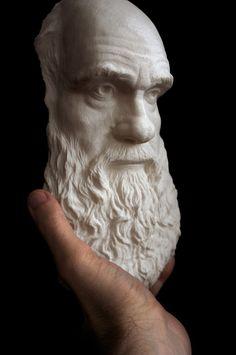 Charles Darwin rapid prototype - historical portrait 3d print. mike fontana