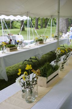 plant centerpieces. potted grass with the pictures coming out, maybe a few candles around it?