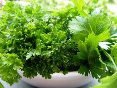 A petrezselyem igazi szupertáplálék! Parsley, Herbs, Food, Alternative, Essen, Herb, Meals, Yemek, Eten