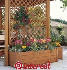 DIY Outdoor Privacy Screen Ideas It's good to have a beautiful backyard where you can have a quality time with your family & friends. Check out these DIY outdoor privacy screen ideas. Privacy Screen Outdoor, Backyard Privacy, Backyard Patio, Backyard Landscaping, Privacy Screens, Privacy Trellis, Pergola Patio, Diy Patio, Wood Trellis