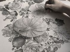 Artist Illustrates Amazingly Detailed Plant-life with Millions of Dots