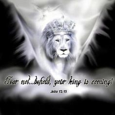 Your King is Coming!!!  In Christianity, the Lion of Judah epithet is used to refer to Jesus Christ.