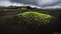 Bildergebnis für iceland purple hills