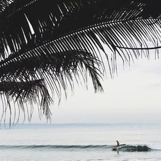 Surf break // @katrinaparker #surf #sea #beach