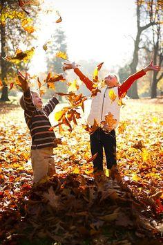 Art Leaves! photo-ideas