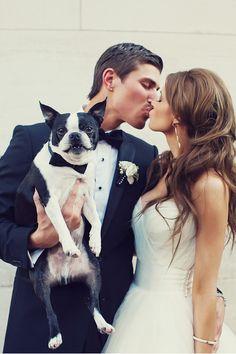 Adorable puppy wedding photo by Tinywater Photography via Junebug Weddings