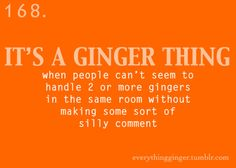 Some woman made a comment at the rodeo about me and twin gingers being within five feet of each other. Big whoop.