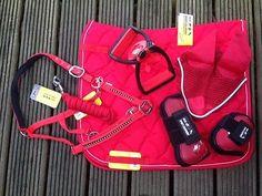 Elegant Set Valance + Fly Ears + Stirrups + Leggings + Holster + Knitted Fire Red
