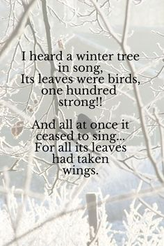 ". January . ""I heard a winter tree in song Its leaves were birds, a hundred strong; When all at once it ceased to sing, For every leaf had taken wing."" ~ Mervyn Peake"
