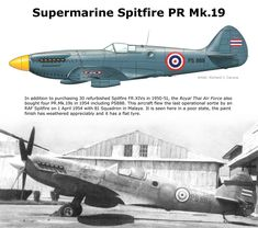 Spitfire PR Mk.19 Fighter Aircraft, Fighter Jets, Aerial Camera, The Spitfires, War Thunder, Supermarine Spitfire, Ww2 Planes, Royal Air Force, Aerial Photography