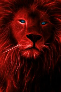 The Lion King Fractalized iPhone Wallpaper Free – GetintoPik Beautiful Creatures, Animals Beautiful, Cute Animals, Big Cats Art, Cat Art, Lion Love, Lion Pictures, Tiger Art, Lion Of Judah