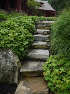 Stick to one or two plants for your garden's groundcover. Find something lush that will fill out with little maintenance. Geranium macrorrhizum is a tremendous ground cover in shade, and is as deer-resistant as plants come.  This designer dominated the space with this plant and a sedge — trouble-free plants that will live for decades.  The textures complement each other beautifully.
