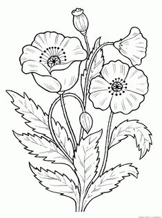 Trendy embroidery flowers pattern coloring pages ideas Printable Flower Coloring Pages, Garden Coloring Pages, Pattern Coloring Pages, Colouring Pages, Coloring Books, Embroidery Flowers Pattern, Flower Patterns, Embroidery Stitches, Embroidery Designs