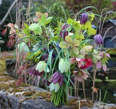 Lock Cottage Flowers, Surrey UK--homegrown spring bouquet with fritillaria meleagris, hellebore, Japanese maple, amalanchier blossom