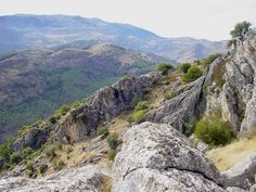 another favourite mountain range is the Sierra de las Nieves near Ronda - our first visit to this lovely area was in 2004
