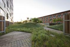 Bâtiment Macallen / Landworks>studio / Photographies par John Horner