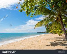 Tropical Beach Of Lamai In Koh Samui Island In Thailand Стоковые фотографии…