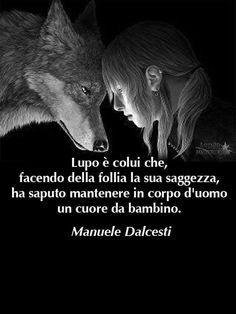 solitario come il Lupo non significa solitudine...