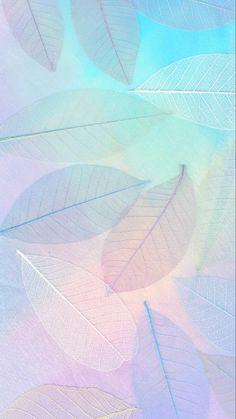 # Aesthetic Wallpaper