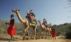 Take a camel ride on your family safari in Kenya Travel ideas Safari Adventure, Adventure Travel, Family Adventure Holidays, Tanzania Safari, Wildlife Safari, Thomas Brodie Sangster, Africa Travel, Kenya Travel, African Safari