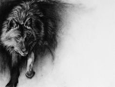 Throw me to the wolves and I will return leading the pack  Giclee Print from an original charcoal drawing on handmade recycled paper. Printed by Dangerfork Print Co. on Photo smooth 100% cotton 300GSM paper.  *please note we only have sizes up to A3 in stock, anything larger is ordered on request and will take a couple of days for us to have it before we can ship it to you. For more information about Dangerforks printing services you can check out their website here--> http://dan...