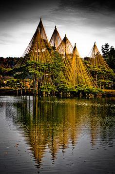 Kenroku-en garden ( 兼六園 ) yukitsuri structures | Kanazawa City, Ishikawa, Japan