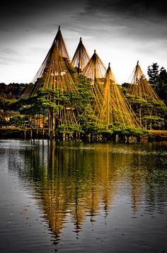 Kenroku-en garden ( 兼六園 ) yukitsuri structures | Kanazawa City, Ishikawa