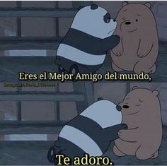 Best Friend Quotes, My Best Friend, Bff Images, We Bare Bears Wallpapers, Queen Love, Bear Wallpaper, Old Love, Best Friends Forever, Spanish Quotes