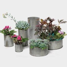 A beautiful rustic decoration, Zinc Metal Norah Vase in Silver Gray measures inches in diameter by inches tall and makes an elegant centerpiece for a country-style wedding. Rustic Wedding Centerpieces, Vase Centerpieces, Wedding Decorations, Wedding Ideas, Diy Wedding, Dream Wedding, Fake Flowers, Flowers Nature, Artificial Flowers