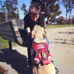 Molly the Diabetic Alert Dog -