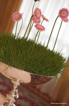 Wheat grass with miniature gerbera daisies, Nancy Saam Flowers
