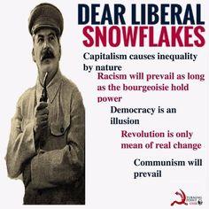 7 Democratic Socialism Ideas Democratic Socialism Socialism Historical Memes