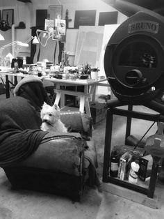 Mon atelier.... Rose Holzer Rose, Photos, Animals, Studio, Pink, Pictures, Animales, Animaux, Animal