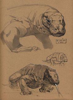 Komodo dragon by Floris van der Peet on ArtStation. Animal Sketches, Animal Drawings, Art Drawings, Desenho Tattoo, Wow Art, Dragon Art, Wildlife Art, Creature Design, Art Inspo
