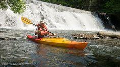 Bronx River (New York, NY) - Best Urban Kayaking Adventures