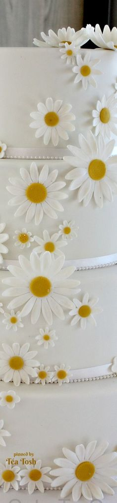 ❇Téa Tosh❇ Daisy Dream Cake