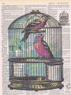 Birdcage.Birdred blue.altered antique. book by studioflowerpower, $8.50