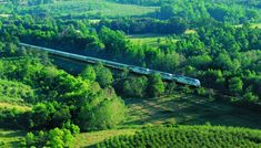 7 Reasons to Take the Train from New York to New Orleans Amtrak Train Travel, Bayou Country, Leaving New York, Fall Vacations, Train Route, Slow Travel, Train Journey, Train Rides, New Orleans