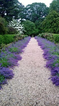 A Visit to Planting Fields Arboretum