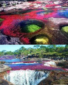 Caño Cristales, El rio de los cinco colores... es un río de Colombia, que esta ubicado en la Sierra de la Macarena, en el municipio del mismo nombre, en el departamento del Meta.