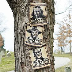 Set of Three Wanted Posters