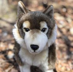 Standing Timber Wolf Remus is 23 Inches from nose to tail 14 Inches in height 7 Inches in width Plush Animals, Baby Animals, Cute Animals, Wild Animals, Wolf Stuffed Animal, Stuffed Animals, Wolf Craft, Wolf Plush, Baby Huskies
