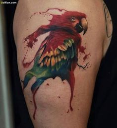Only the best free Parrot Tattoo tattoo's you can find online! Parrot Tattoo tattoo's to print off and take to your tattoo artist. Love Tattoos, Tattoo You, Arm Tattoo, Amazing Tattoos, Watercolor And Ink, Watercolor Tattoo, Colorful Bird Tattoos, Parrot Tattoo, Famous Tattoo Artists